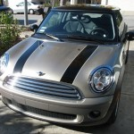 MINI after he got his stripes!