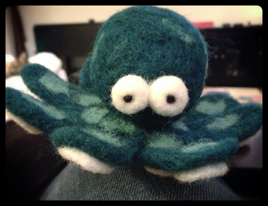 Completed Woolbuddy Octopus!